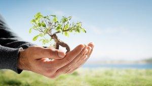 Servizi Crescita Personale